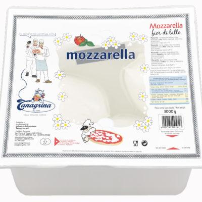 Mozzarella Bocconcino Congelato 100grx30 Uds Tanag